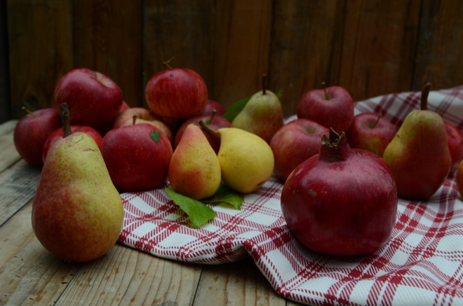 apples & pears-6